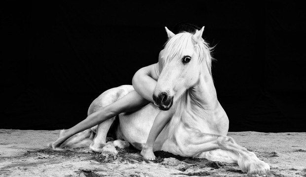 Los caballos alados de Isabel Muñoz